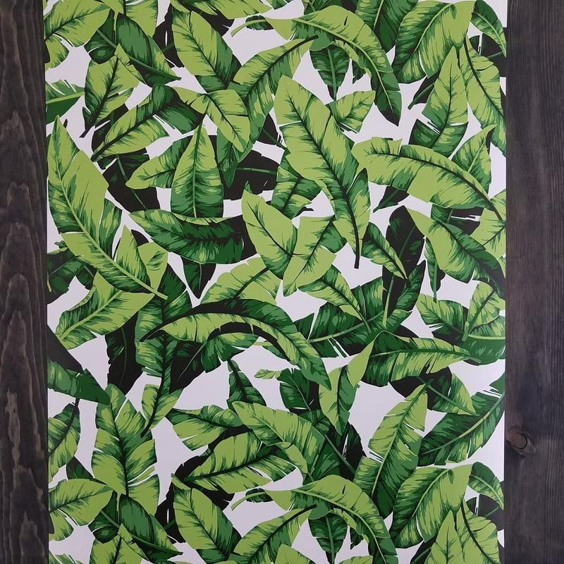 Palm Leaf Botanical Peel And Stick Wallpaper For The Home