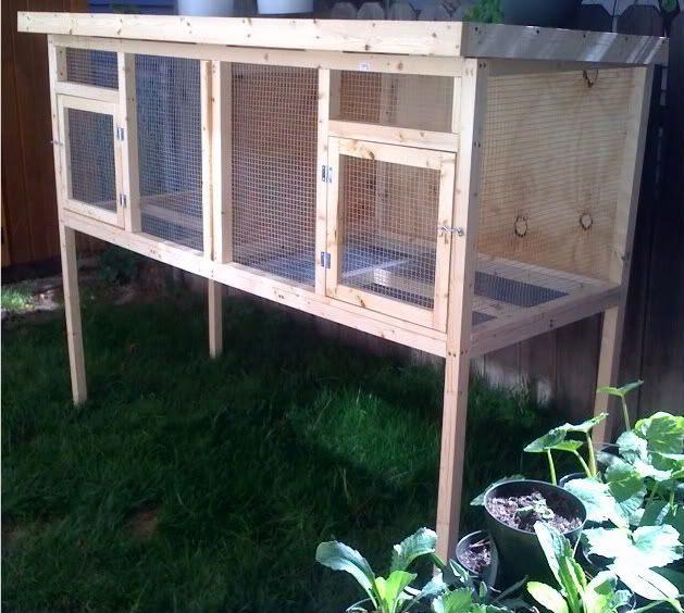 Custom rabbit hutch chicken coop duck house aviary for Duck hutch ideas