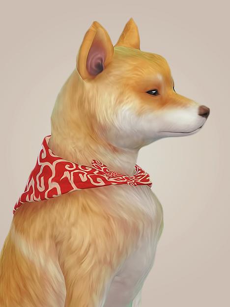 Nonava Karakusa Bandana Collar Chien Chat Sims Chien