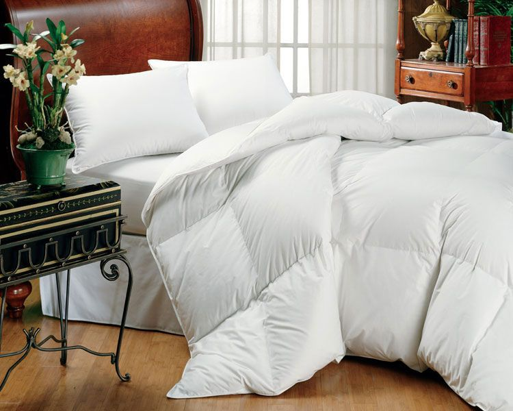 Found It At Wayfair Ed Bauer 600 Fill Goose Down Comforter