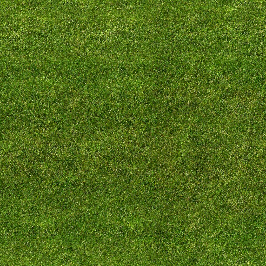 Grass Texture Seamless Grass Texture Grass Texture