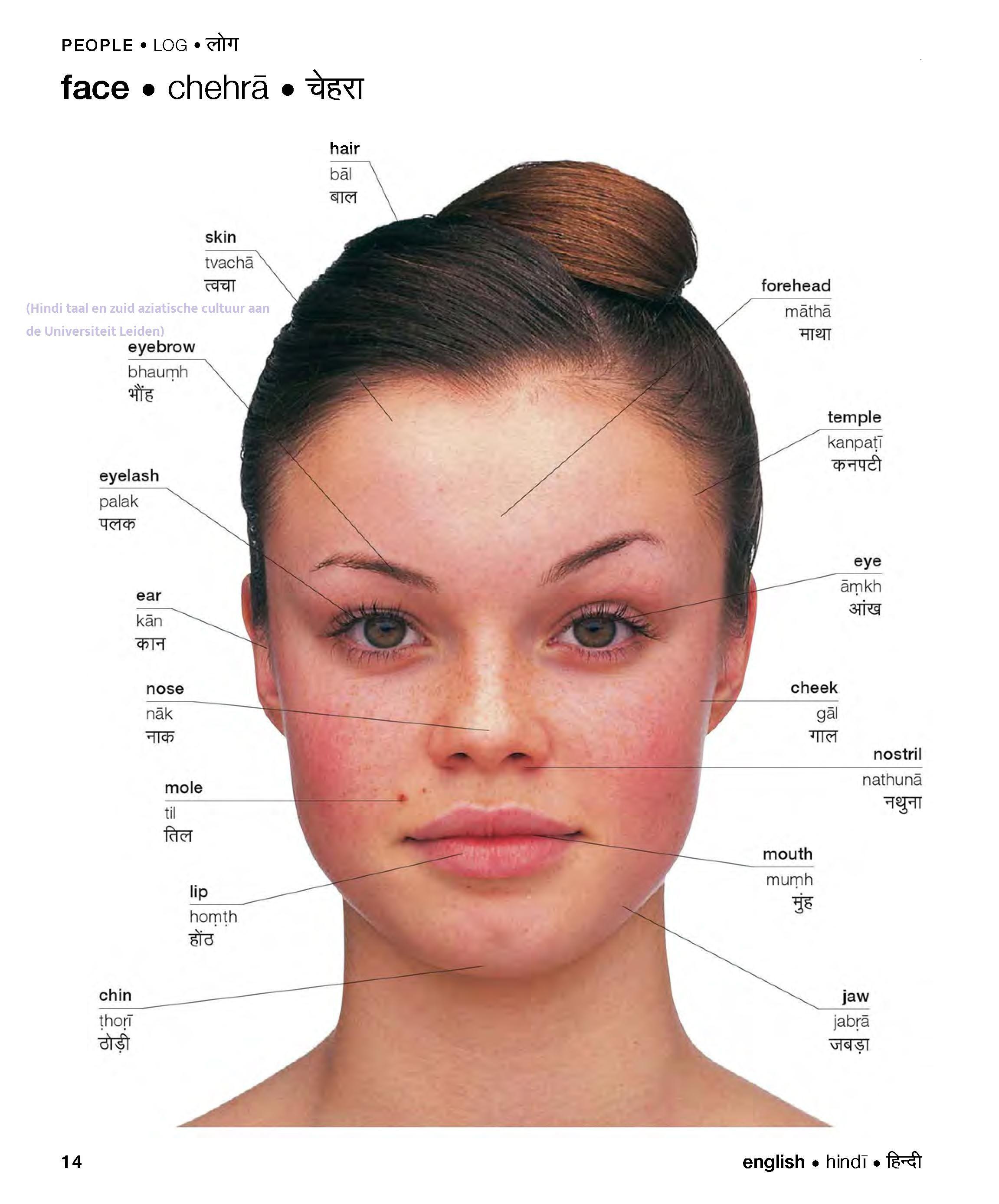 Hindi Words for body parts - Face (Hindi taal en zuid ...
