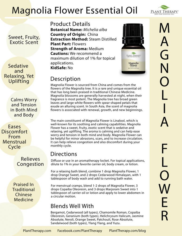 Essential Oil Of The Month Magnolia Flower Plant Therapy Essential Oils Plant Therapy Oils Essential Oil Plants
