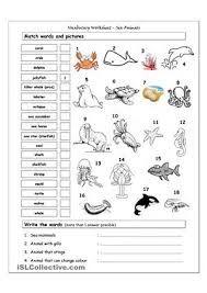 """Résultat de recherche d'images pour """"sea animal vocabulary ..."""