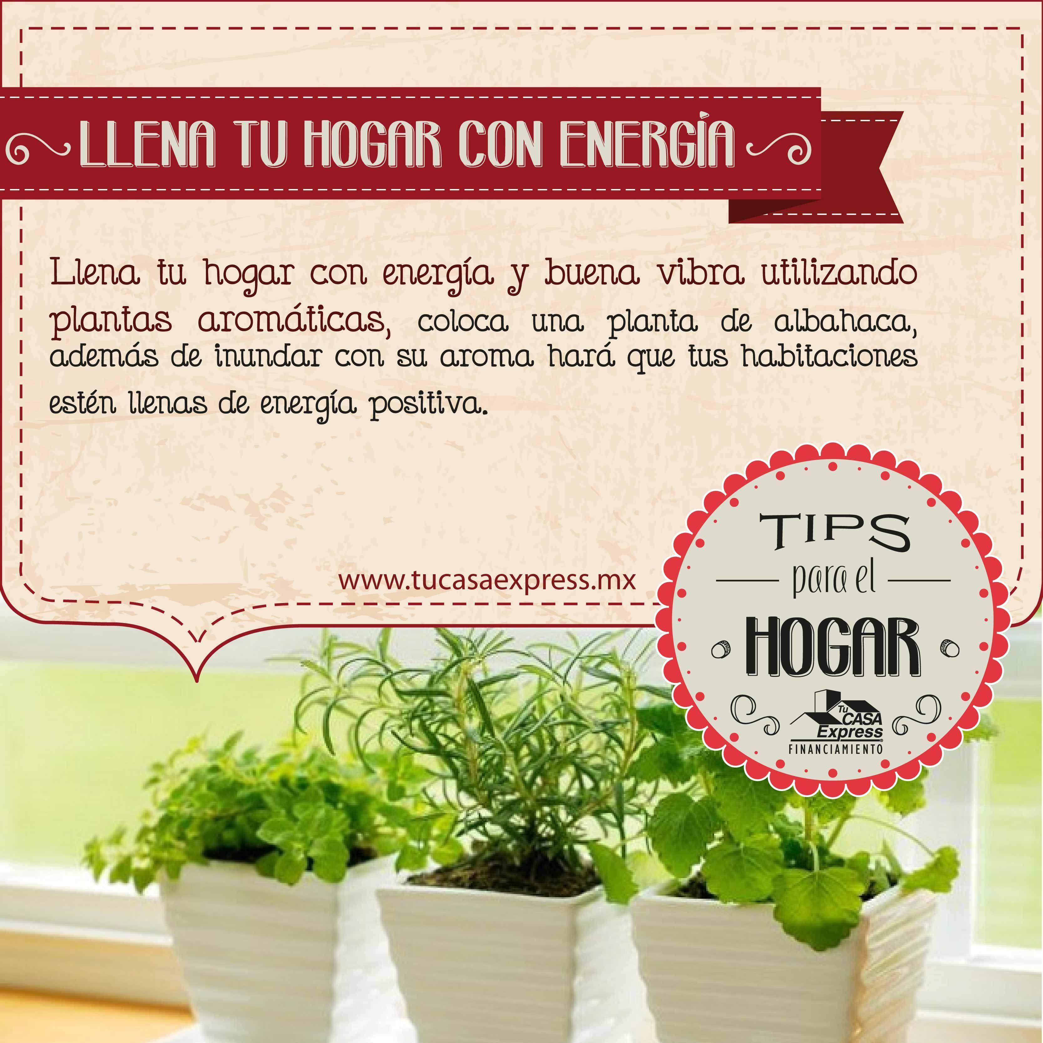 Llena Tu Hogar Con Energ A Y Buena Vibra Tu Casa Express Tips  ~ Limpiar Sofa De Tela Trucos Caseros