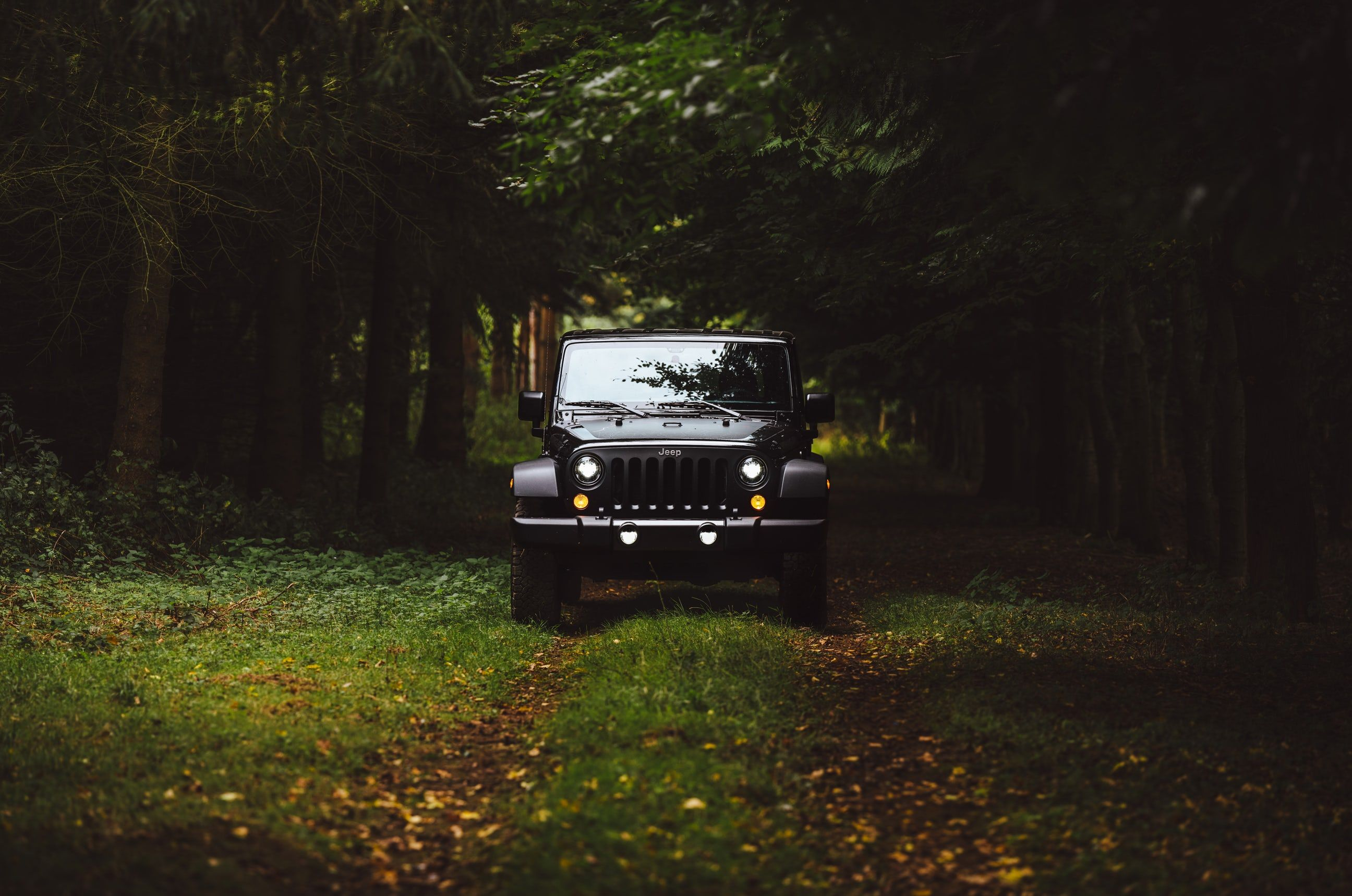 Jeep Pictures Hd Download Free Images On Unsplash Toyota Suv