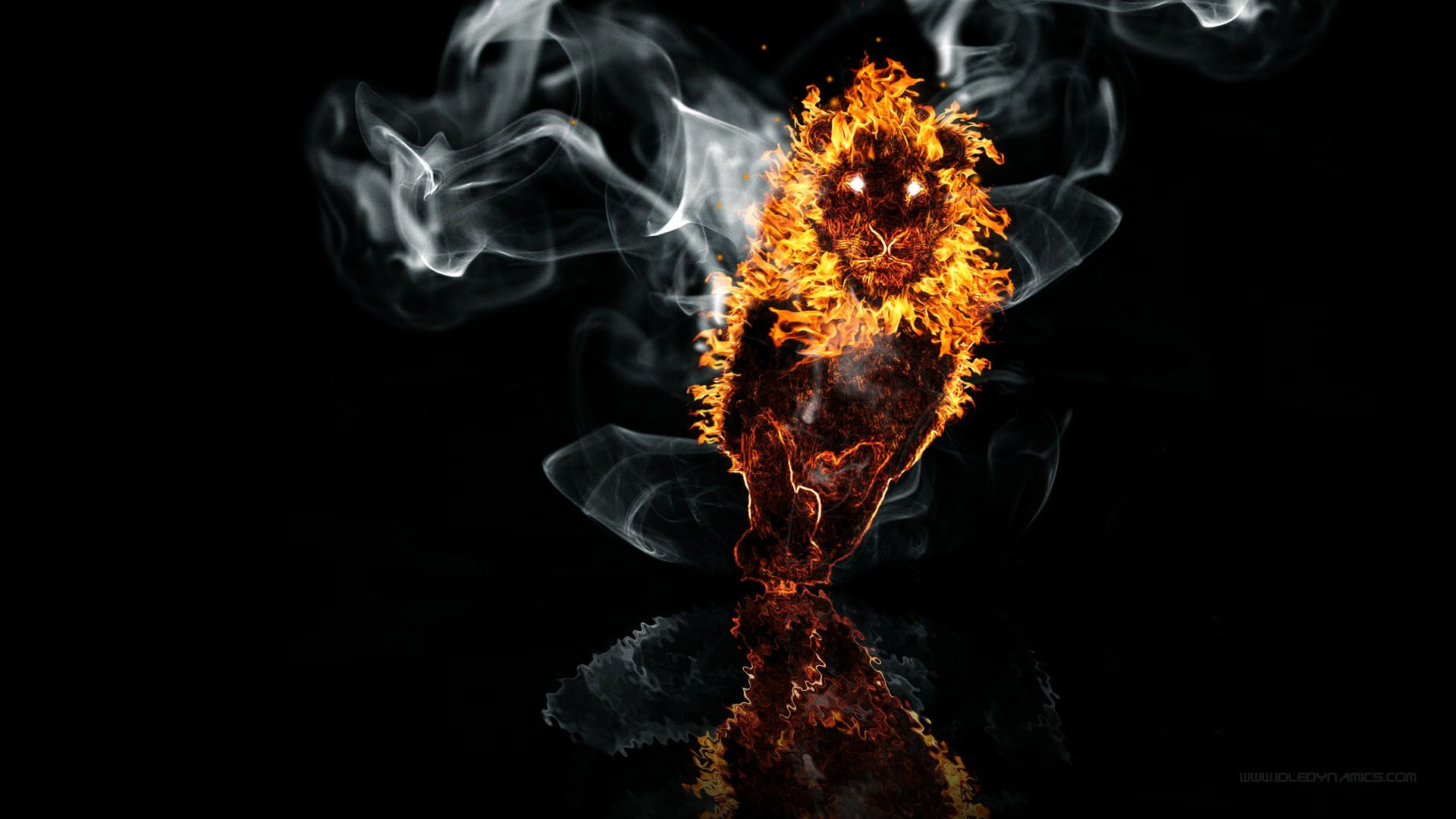 1 Lion Fire On The Water HD Wallpapers | Backgrounds - Wallpaper Abyss