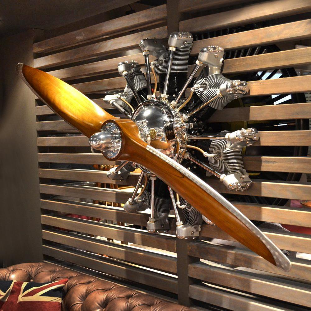 Propeller And Stellar Aircraft Engine With Images Aviation