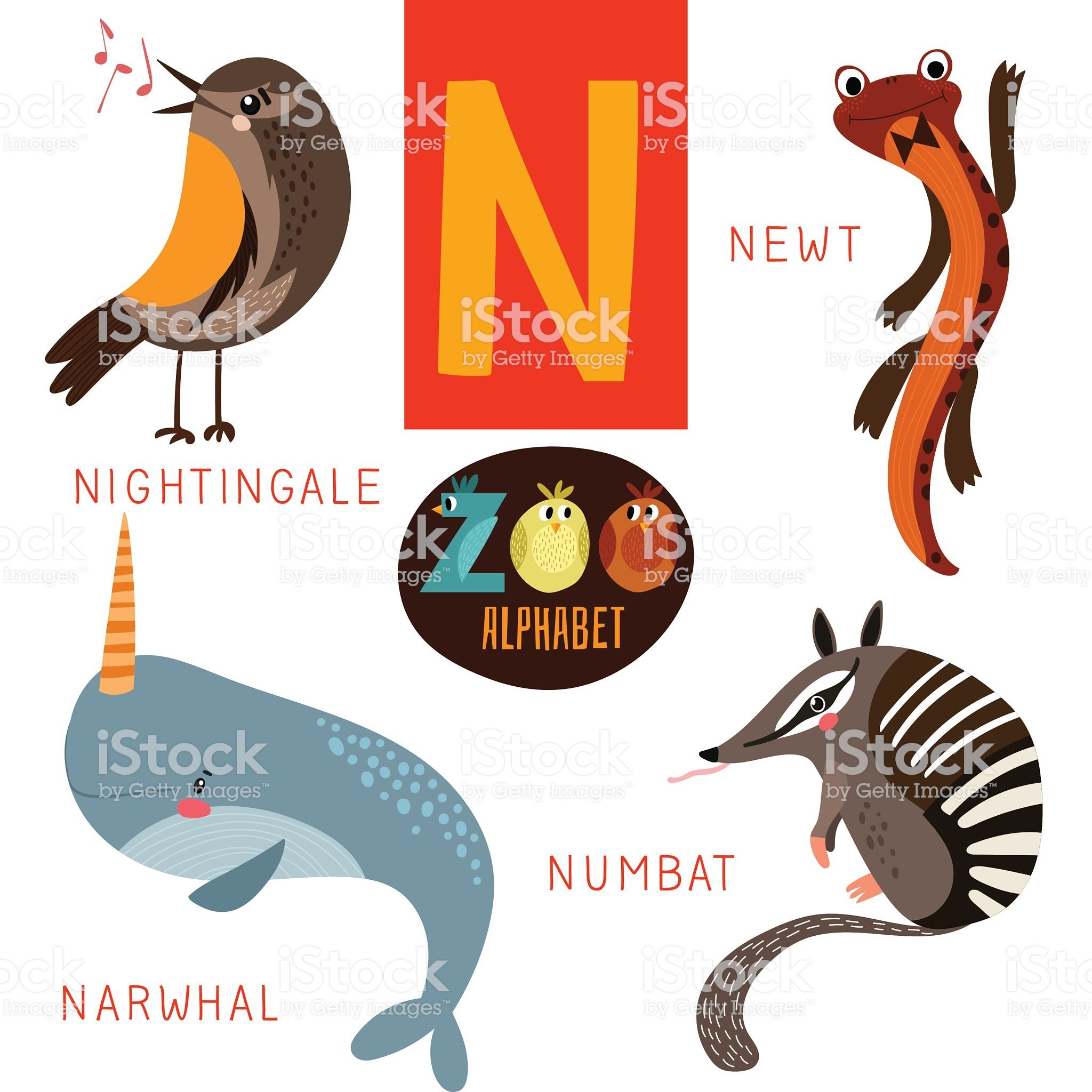 Cute Zoo Alphabet In Vector N Letter Funny Cartoon In 2020 Narwhal Pictures Funny Cartoon Alphabet