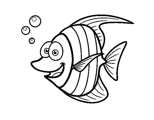 Dibujo de Pez escalar para colorear  Dibujos de Animales