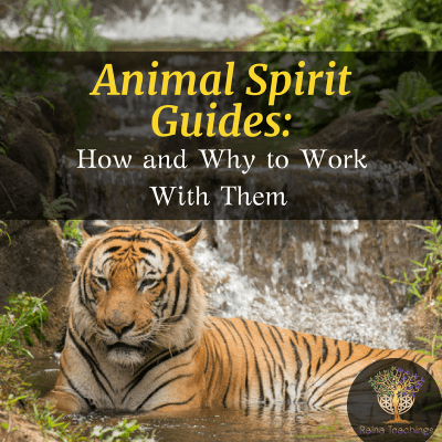 Creating Your Altar and Sacred Space Animal spirit