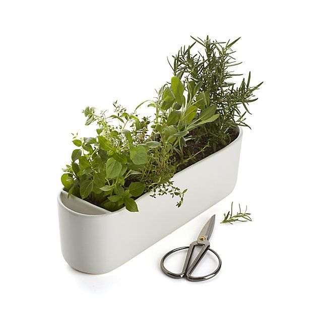 Herb Planter With Scissors Reviews Crate And Barrel 400 x 300