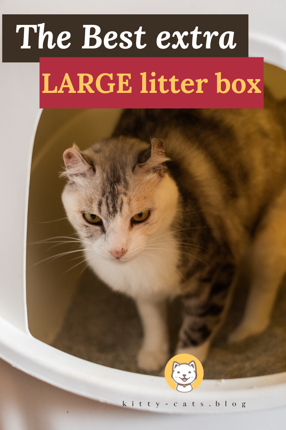 The Best Extra Large Litter Boxes In 2020 Kitty Cats Blog In 2020 Best Small Pets Cat Supplies Diy Best Cat Litter