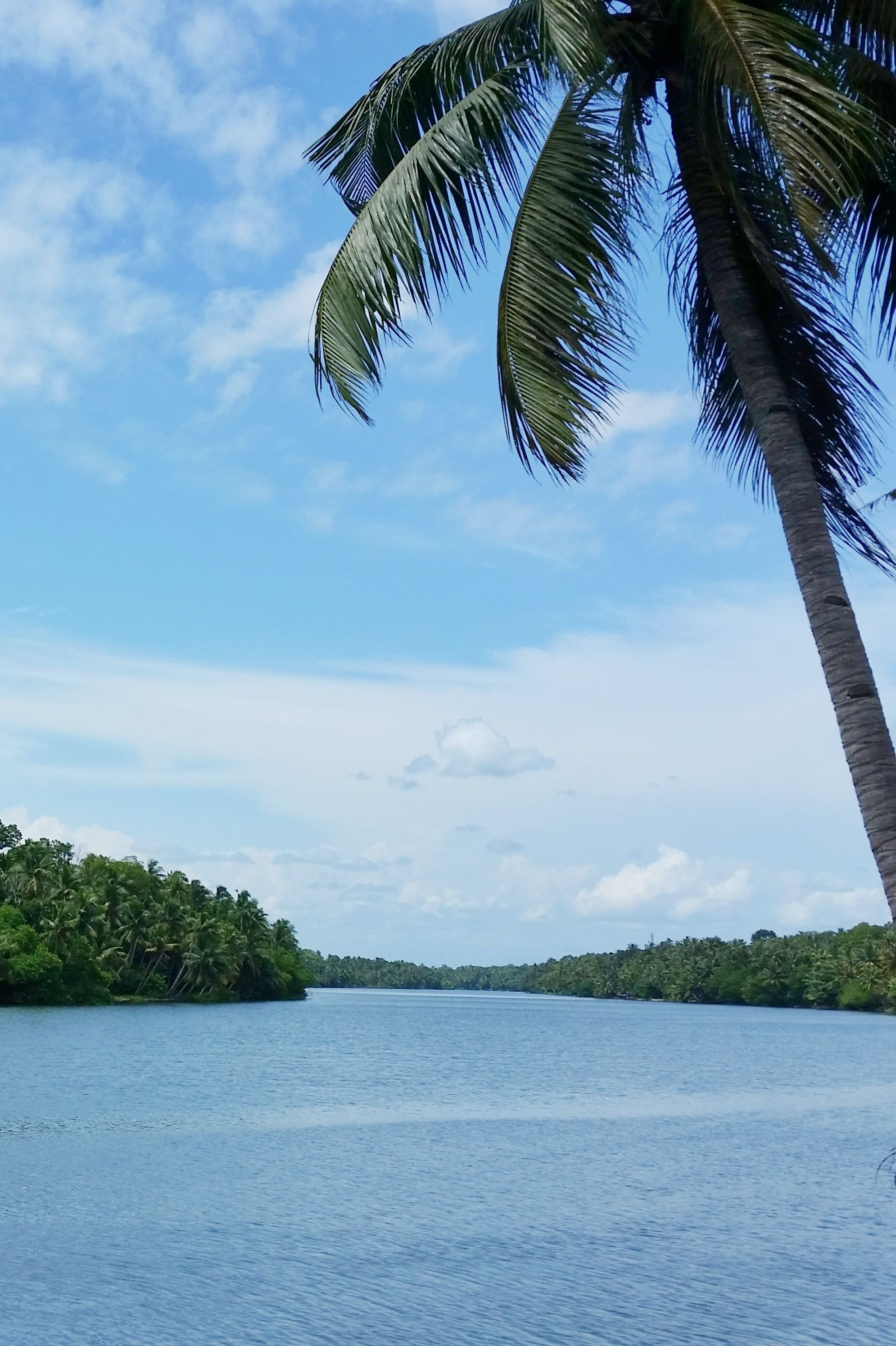 , Places to visit in India backpacking Kerala – munroe island backwaters, My Travels Blog 2020, My Travels Blog 2020