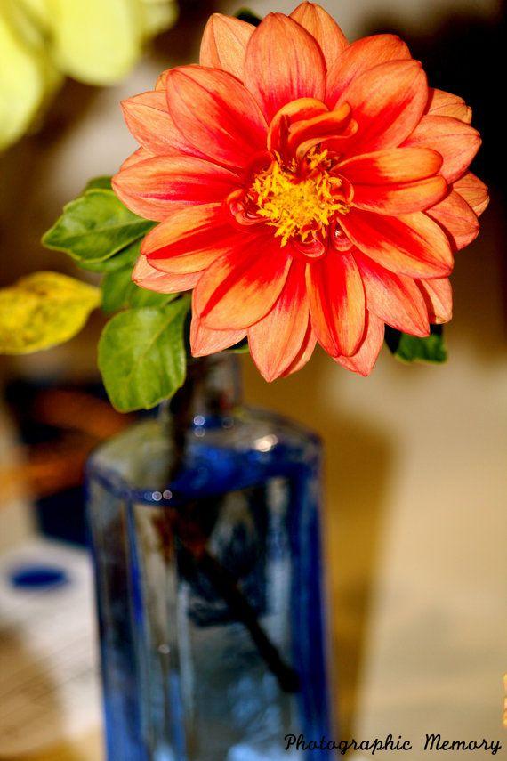 Flower Print by PhotoMem on Etsy, $5.00