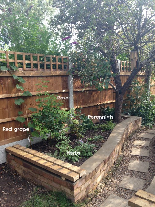 Raised bed, flowers, grape, herbs, reclaimed brick