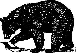 35+ Black bear clipart free info