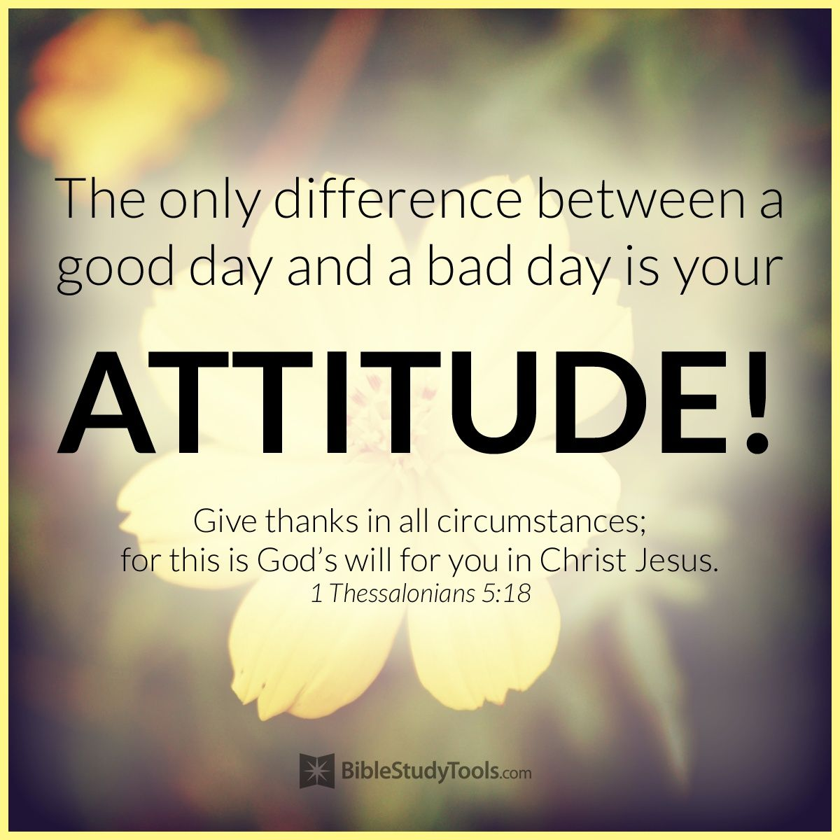 your attitude makes all the difference attitude bible