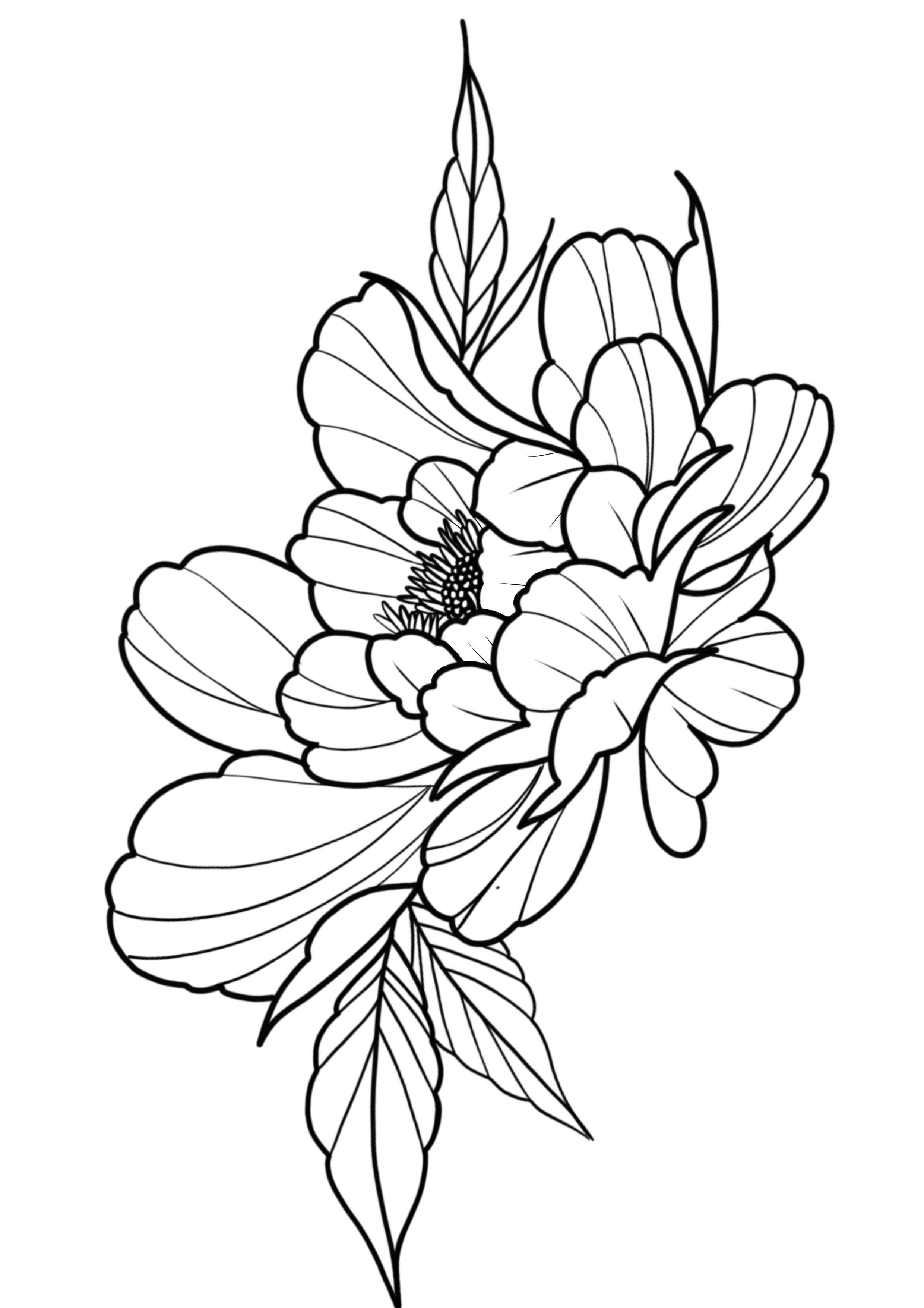 Peony Tattoo Design Japanese Flower Tattoo Peony Drawing Peony Illustration