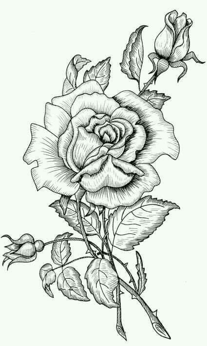 Pin de Rosemarie Sancho en Para Pintar Flores y Arboles | Pinterest ...