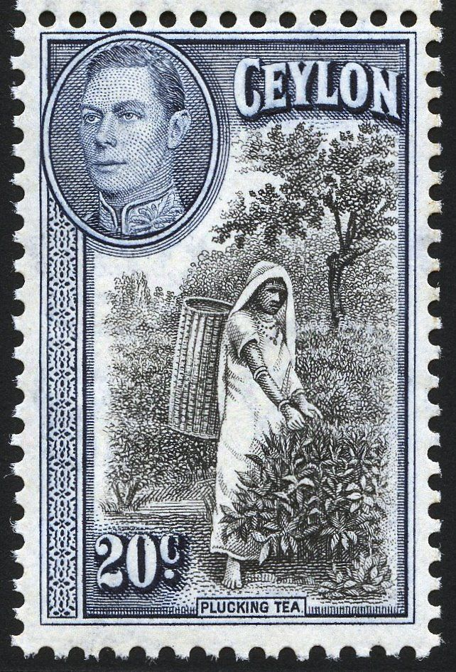 King George VI Postage Stamps Ceylon 1938 49