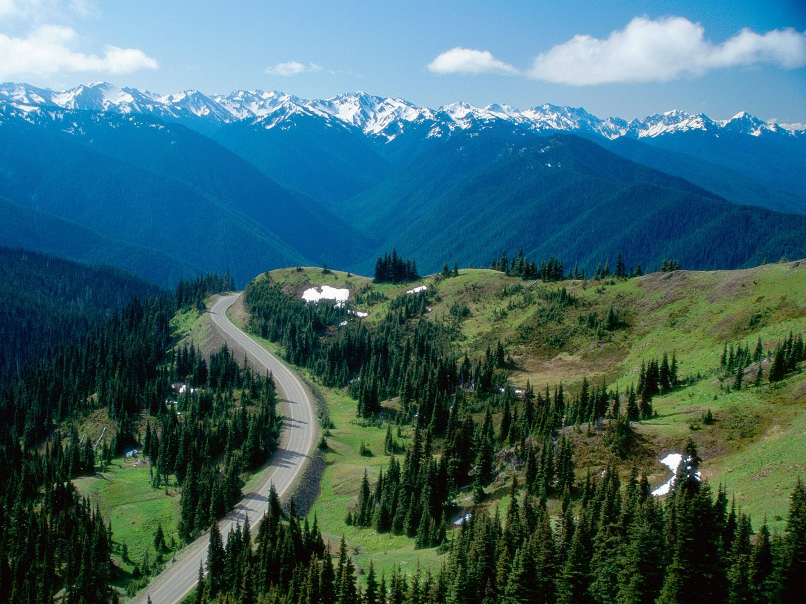 Drive Up Hurricane Ridge In The Olympic National Park Expansive Untouched Beauty Will