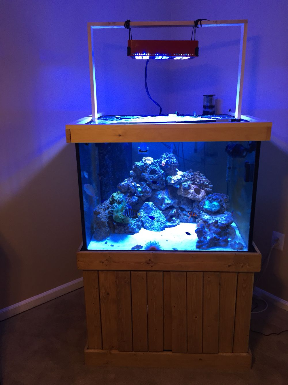 150 Gallon Cube With Light Support Reef Tank Aquarium Cube