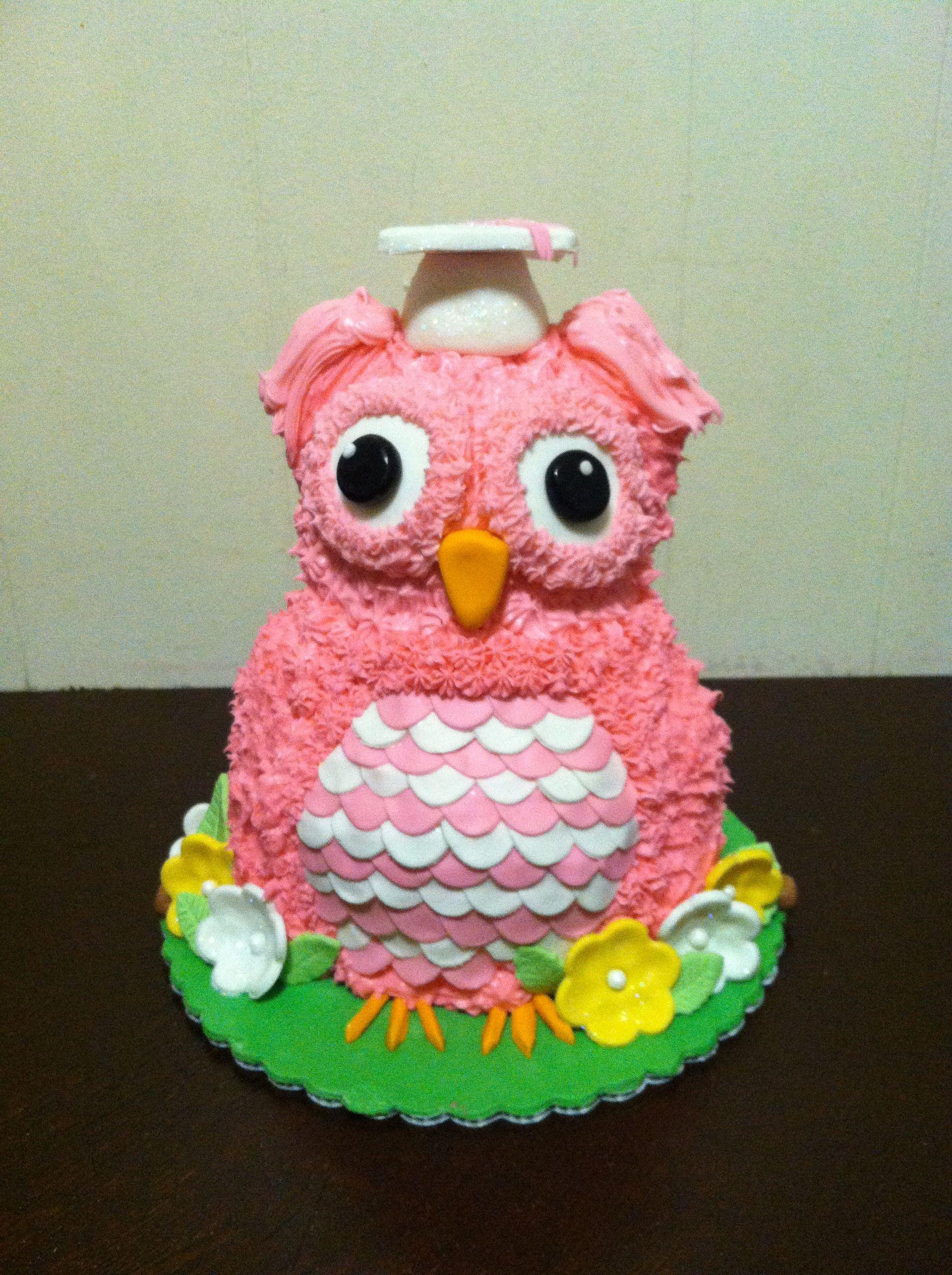 3d Owl Graduation Cake Made Using A Wilton 3d Teddy Bear