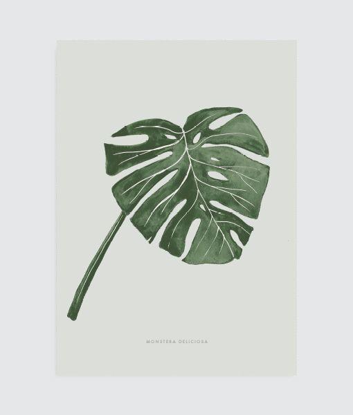 Monstera Vingerplant Poster Meerdere Tinten Groen Poster Monstera Blad Tekening