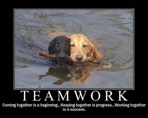 It's always about teamwork. | Work quotes funny, Teamwork ...