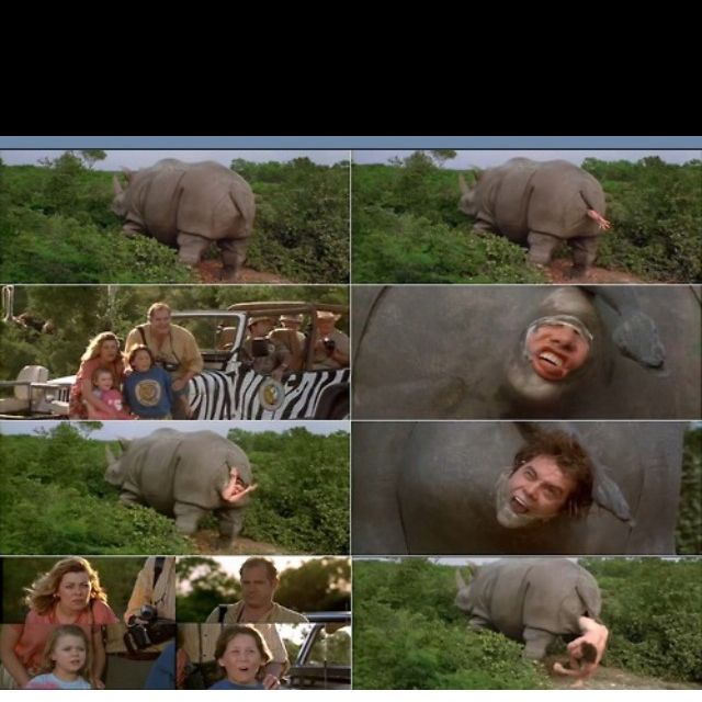 ace ventura when nature calls quotlook the mother rhino is