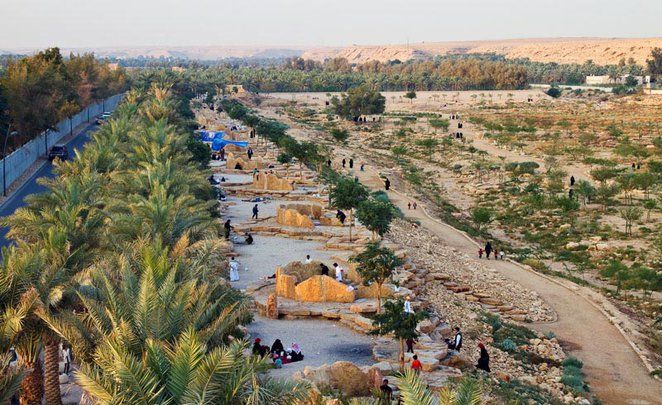 Design Wadi Wetland Places To Travel