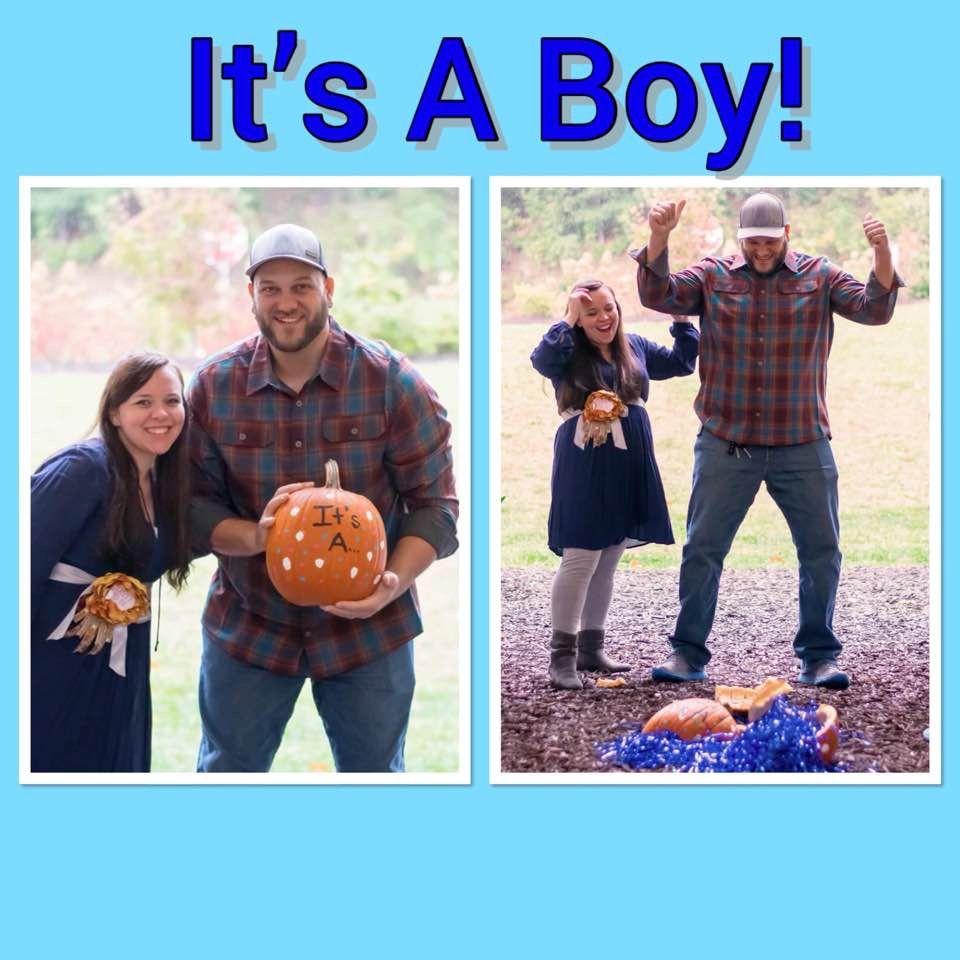 Fall Gender Reveal Pumpkin Smash Fall Gender Reveal Gender Reveal Pumpkin Gender Reveal