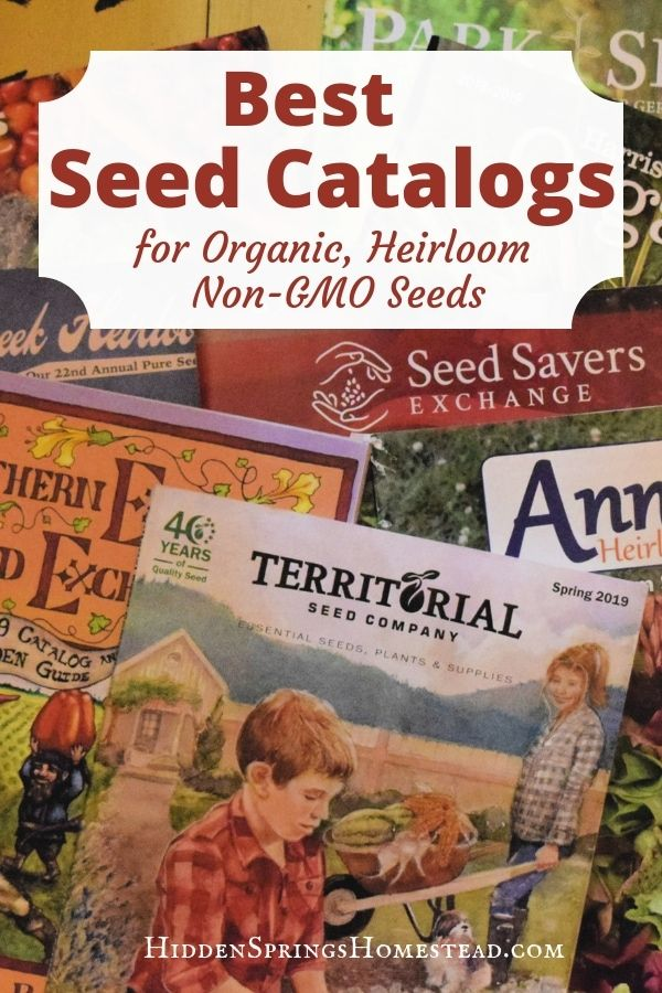 24 Best Seed Catalogs For Home Gardeners New Edition