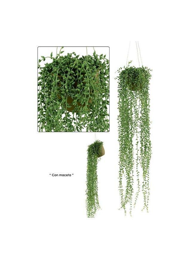 Senecio artificial colgante de apariencia natural nueva for Piante rampicanti finte