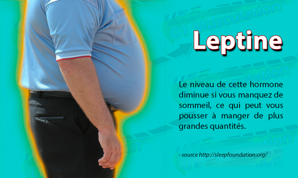 La-leptine  (2)