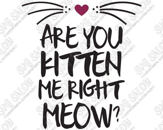 Are You Kitten Me Right Meow? Custom DIY Iron On Vinyl Shirt Decal Cutting File in SVG, EPS, DXF, JPEG, and PNG Format