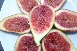 Damit der Feigenbaum Früchte trägt - Pflegetipps für die Feige
