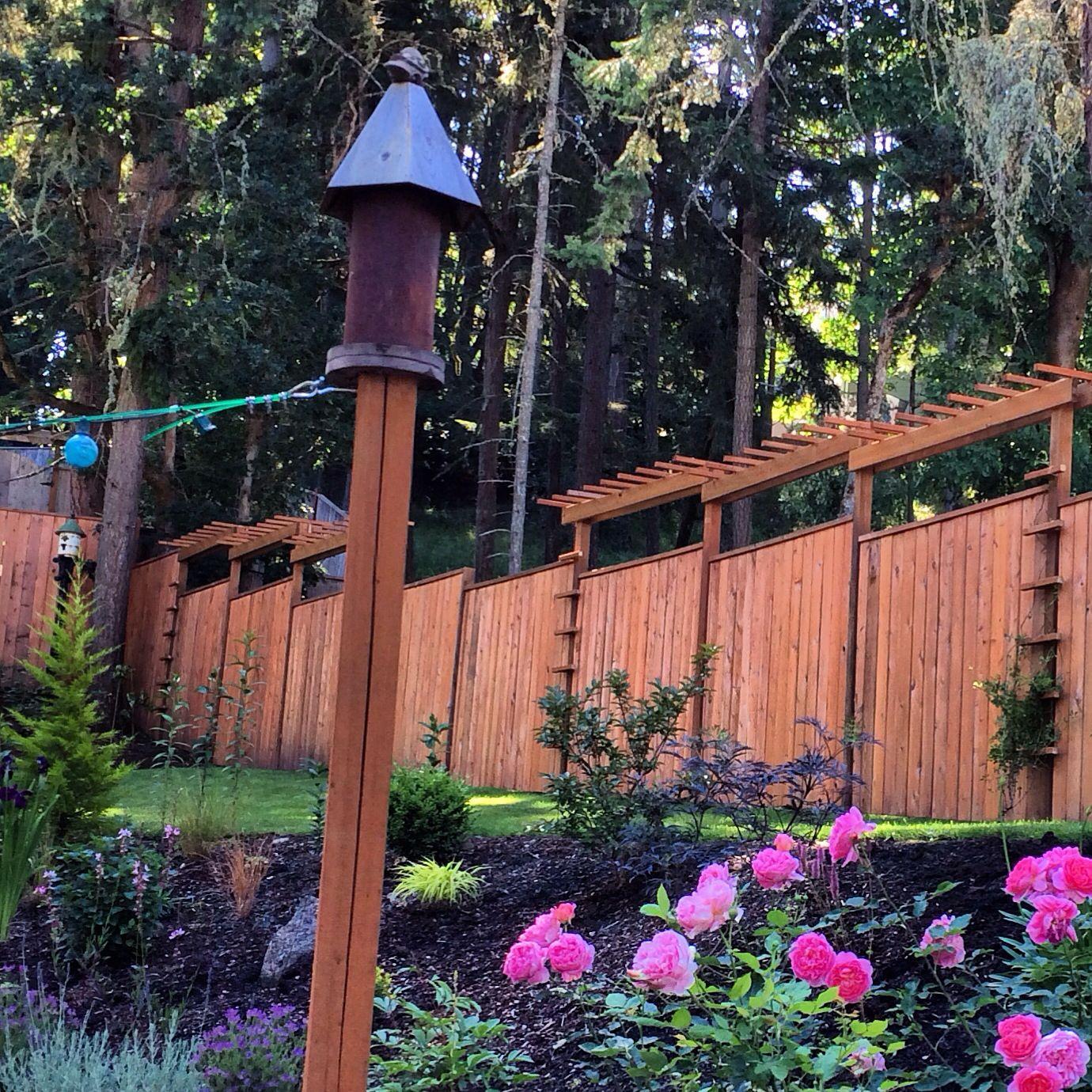 Birdhouse, Slope Cottage Garden