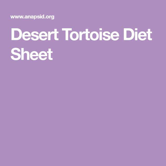 Desert Tortoise Diet Sheet