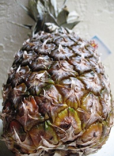 Image result for rotten pineapple