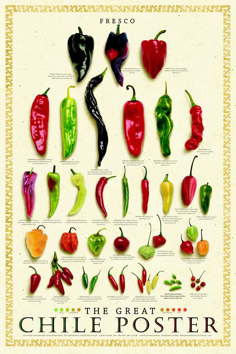 Fresh Chile Poster Stuffed Peppers Beverage Poster Food Poster