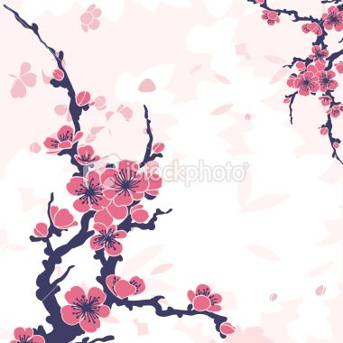 Sakura Branch Vector Illustration Cherry Blossom Images Floral Background Abstract Floral
