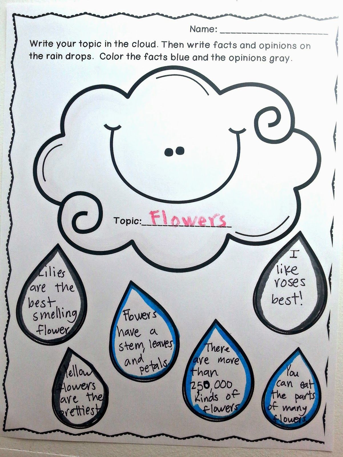 Fact And Opinion For Spring By Create Abilities Great Blog Post With A Freebie
