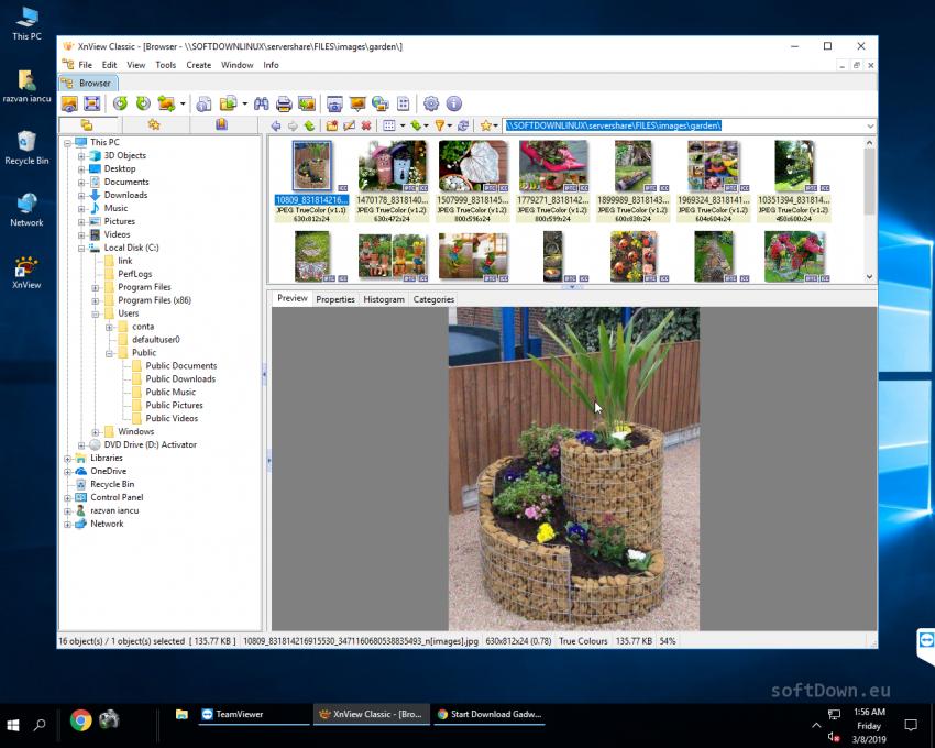 XnView 2 48, Free Download - softDown eu in 2019 | WINDOWS | Image