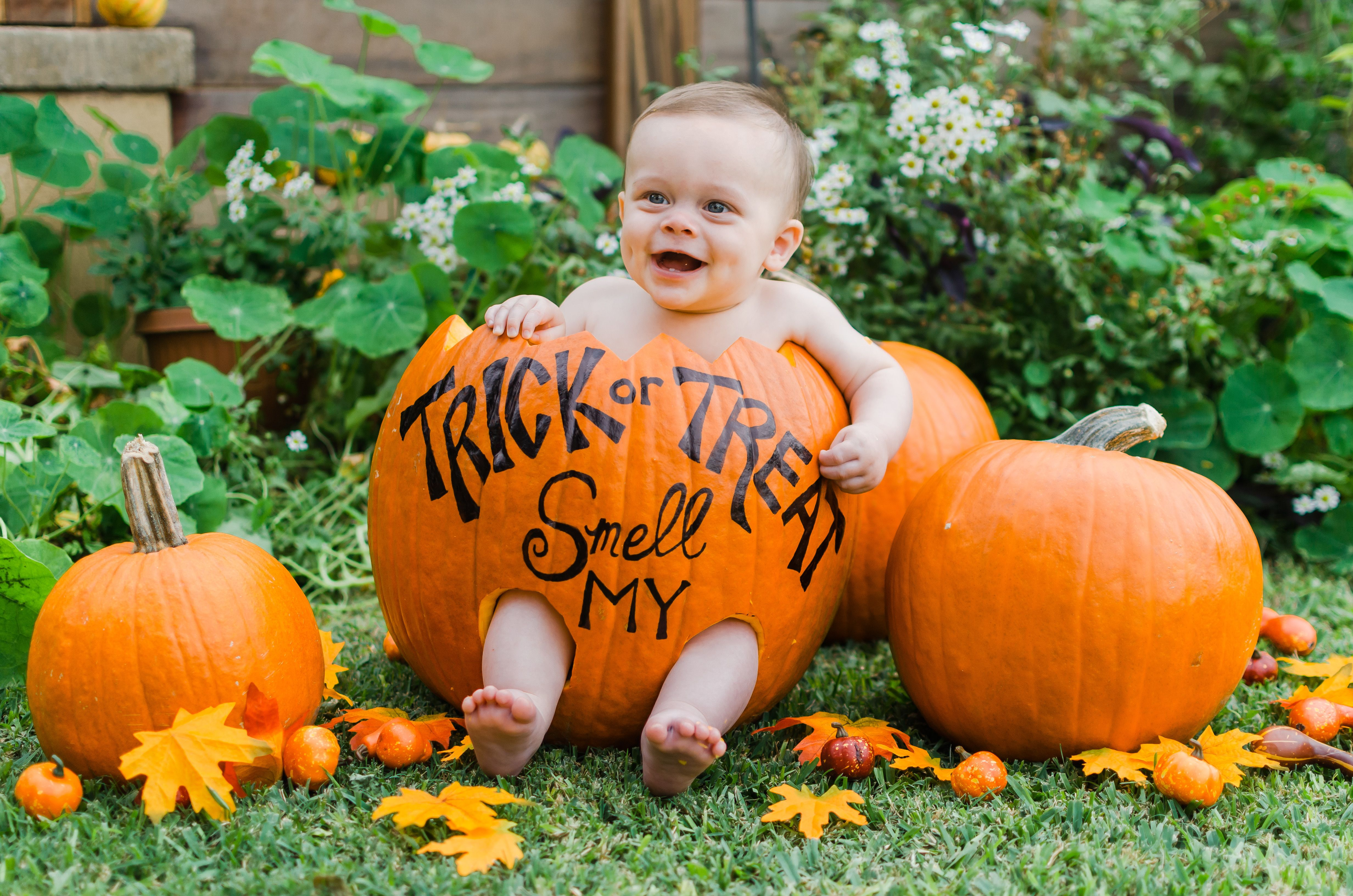 Pin by Julia Cobbs on holiday! Baby in pumpkin, First