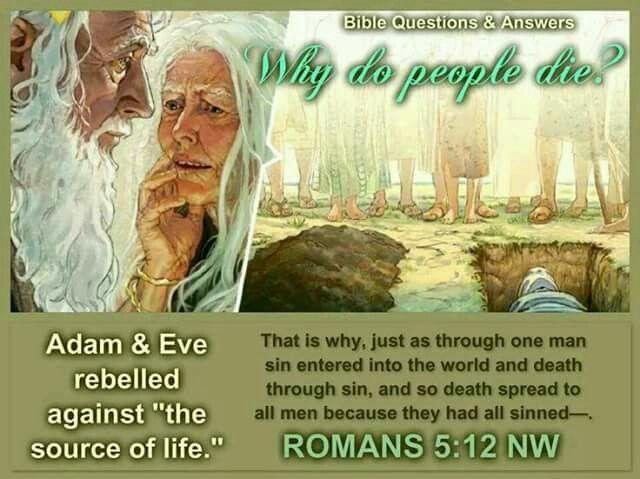 Why do people die? Romans 5:12.