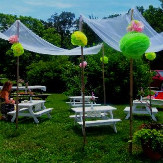 My daughters tea party decor. I hung crinoline fabric from bamboo and made tissue paper poof balls to hang with ribbon from each bamboo pole.
