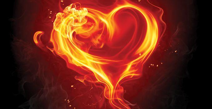 Pin Af Susanne Roth Haick Pa Fire Billeder Hjerte Dyr