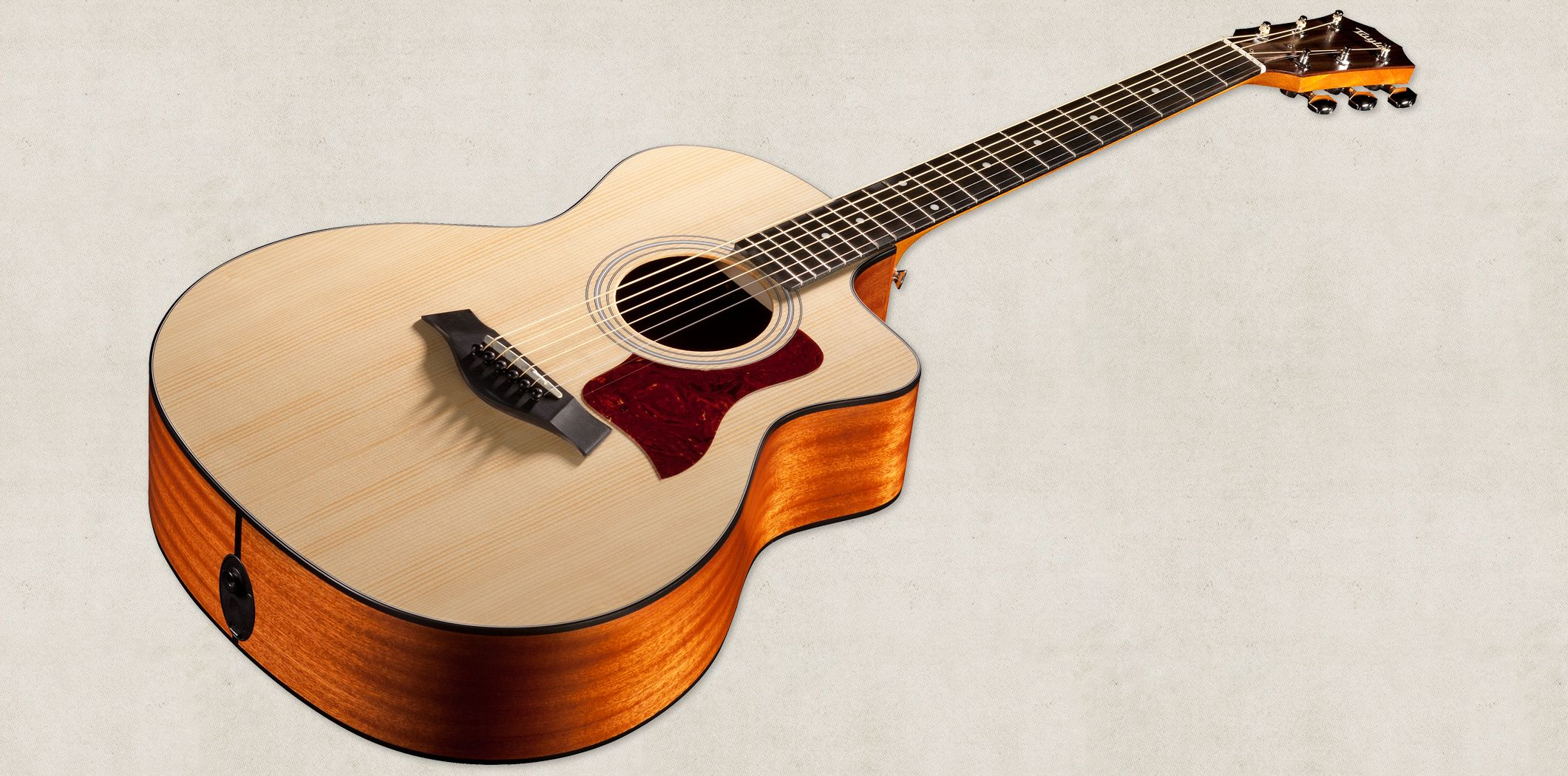 Taylor 110e Acoustic Electric Dreadnought The Guitar That Changed Everything